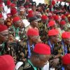 2023 General Elections: Group Demands Igbo President